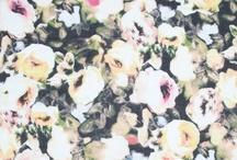 A/W 16 // FLOWERS