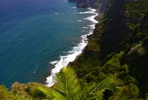 Madeira Views / by Nature Meetings
