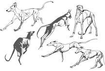 Creature / Dogs