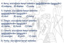 türkçe ödev