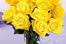 Цветочная эзотерика / Энергетика, цветочные гороскопы, цветы по учениям фэн шуй.