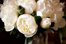 Heavenly Bouquets / Wedding bouquets and flowers / by Steph Bond-Hutkin | Bondville