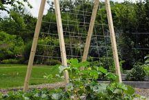 Bahçe tarım