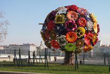 flower love / by Christine