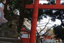 Japanese detail / 日本にいても、古き良きディテイルが身近には少ない。見つけると、嬉しい。