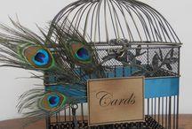 Birds/free