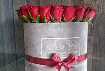 Güller /rose