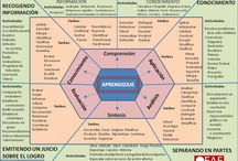 Spanish Language & Culture Board