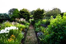 Enchanting Gardens / by Town & Country Magazine
