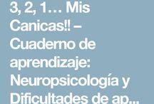 1.3: Atención, funciones ejecutivas y habilidades visoperceptivas y visomotoras en el aula