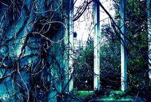Mysterious Places / by Iwona Czajkowska