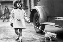 Vintage pet photos / Vintage pet photography