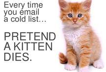 Bad Marketing Kittens / by HubSpot