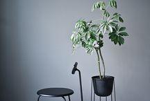 Furniture/Product Design