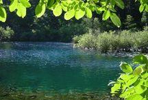 Nyár , víz