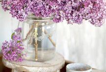 Flowers / 'Kleuren je dag'