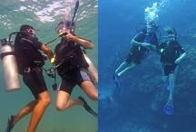 Diving with Portofino!