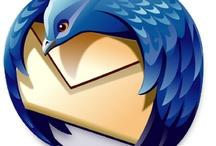 Beautiful thunderbird logo
