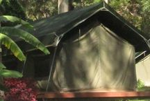 Camping Spots - QLD & NSW