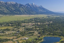 Jackson Hole, my home / people, places, things to do! / by Dawn Meckem Health & Life