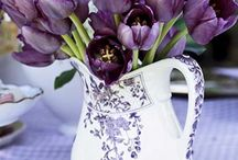 Purple you have to love it / by Patricia