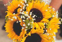 Summer Wedding Vibes