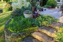 bahçe giriş