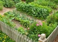 Garden Lust / by deb stclaire