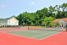 Oak Hill Apartments / Take an inside look at some of our great apartments and amenities we offer at Oak Hill!