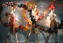 Store Windows & Styling
