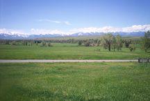Berkshire Hathaway Home Services Montana Real Estate / #Montana Real Estate, #Patterson Team, Sellingmontana, #BHHSMontana