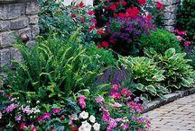 zahrady osázení zařízení