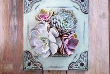 Succulent tablo