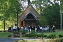 Mississippi Weddings / Mississippi wedding pictures, vendors, venues, and more!