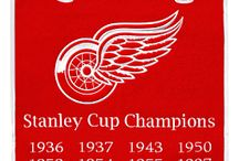 hockey,RED WINGS and others