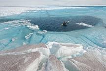 Turisme Polar / Alaska, antártida, Groenlandia, Islandia, Noruega, Islas Feroe, Canadá, Rusia, Suecia, Finlandia, Laponia, Patagonia, Svalbard