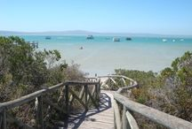 West Coast - Cape / All the amazing places to visit and things to see and do on South Africa's West Coast