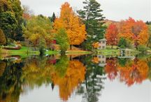 Snap Shots / Photos of outdoor scenery.