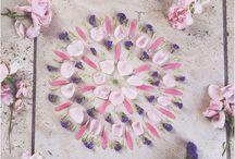 Flower petal mandalas / Beautiful mandalas from flowers and petals, quite often on the instagram tags, #mondaymandala #flowermandala and #playingwithpetals