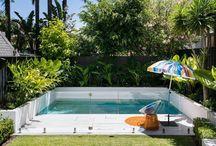 Tiny backyard pool / by Giulia Doyle