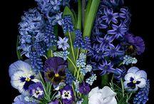 цветочки. букетики