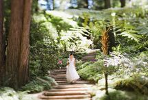 garden weddings / gorgeous garden weddings / by Glamour & Grace