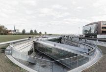 Архитектура   зеленая крыша