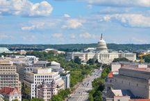 Washington / by Thea Bohmer