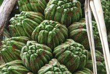 Fruit, veg and plants / Fruits of nature. Unusual and beautiful.