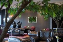 Living Walls / Beautiful Living Walls for any space!!!