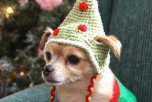 Crochet para mascotas