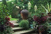 Zahrady - inspirace