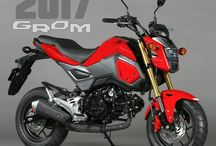 2017 Honda Grom Review | New Motorcycle - Mini StreetFighter Sport Bike / 2017 Grom 125 Specs, Changes, Pictures & Videos, Horsepower Performance Rating, MPG, Colors, Aftermarket Modifications + More at www.HondaProKevin.com
