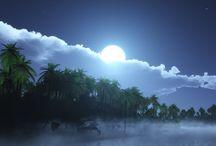 Moon / Our beautiful moon / by Rhonda Albom